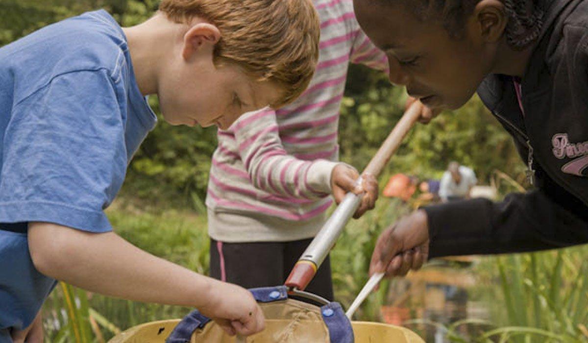Educação em tempo integral: um novo desafio para as escolas particulares.